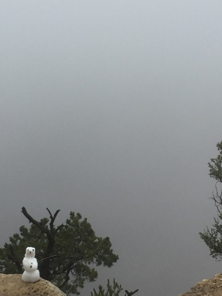 Grand Canyon (it's in there!)