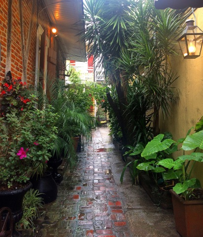 Secret French Quarter Garden