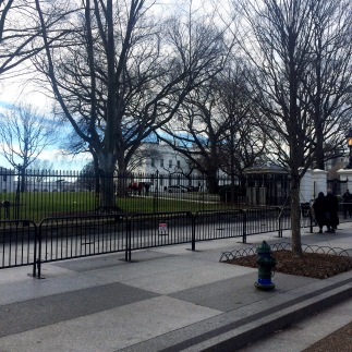 BABY COME BACK (White House)